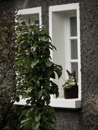 gable house: window Stock Photo