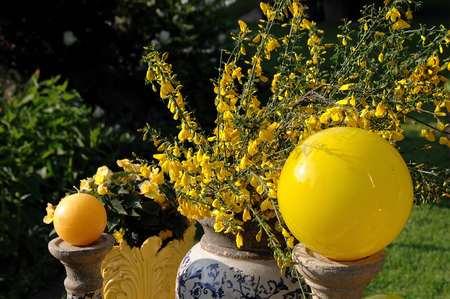 yellow: yellow