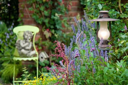 Beautiful garden Standard-Bild
