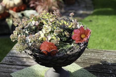 on the table: Garden table