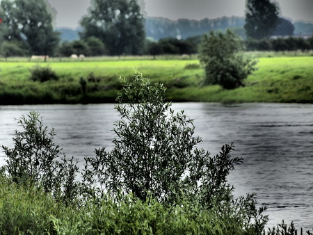ijssel: river in holland Stock Photo