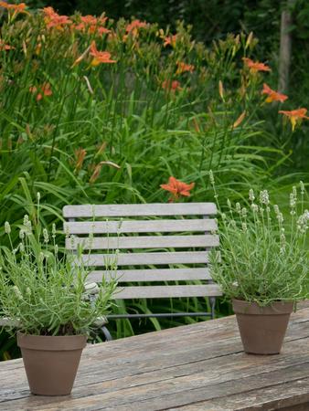 table: garden table