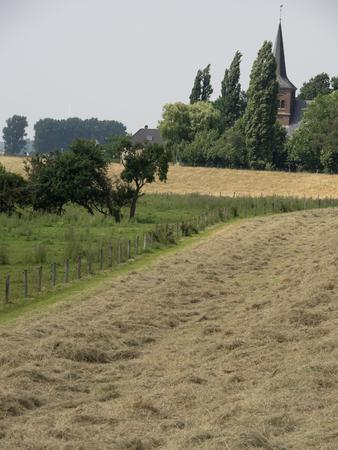 dyke: meadow on dyke