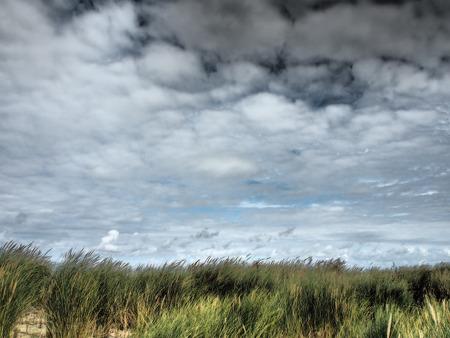 dunes: Dunes