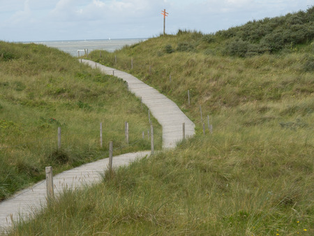 dunes: through the dunes