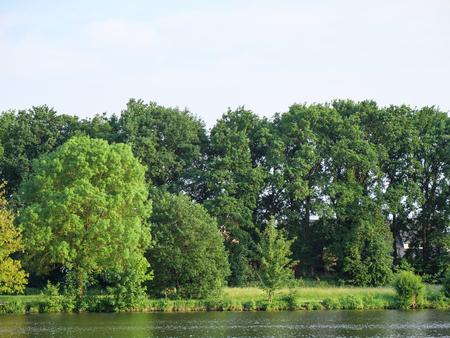 Lake in Germany Stok Fotoğraf