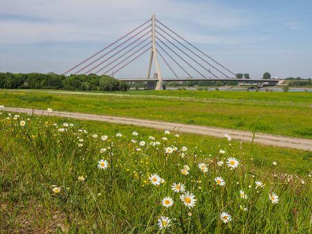Bridge over the Rhine background. Standard-Bild