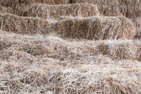 barnyard: the stack in the barnyard