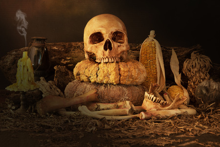 dry fruit: Still life painting photography with skull, dry fruit and hay, dark concept Stock Photo