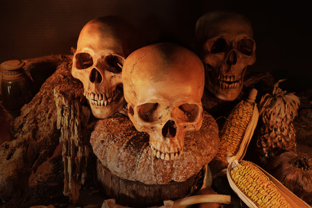 dry fruit: Still life painting photography with three skulls and dry fruit on wooden Table, dark concept and closeup