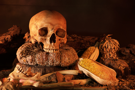 dry fruit: Still life painting photography with skull and dry fruit on wooden Table, dark concept and closeup
