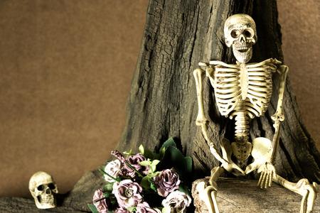 obey: Todavía vida con el cráneo humano y flores bajo el árbol, juego de la historia de amor, de ahora en adelante, yo siempre le obedecen