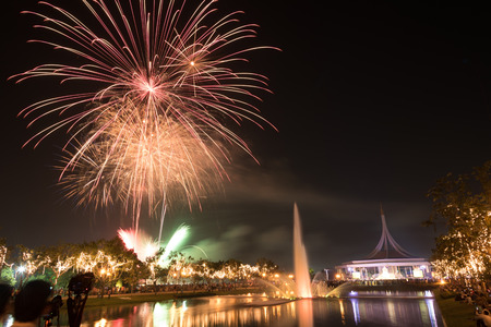firework display: beautiful firework display for celebration