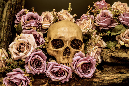 still life painting photography with human skull and roses background, love concept, grunge, vintage and dark tone for halloween