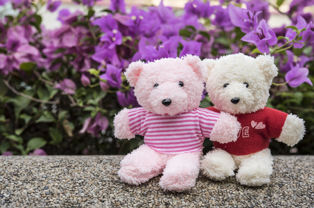 couple teddy bears picnic in garden with pink flowers background, love concept Standard-Bild