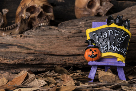 dry leaf: Jack-o-lantern and bat on happy halloween board with human skull and dry leaf in forest