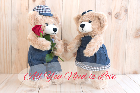 Quote all you need is love over Boy teddy bear holding red rose gift for lover on wood background, Love and friendship concept