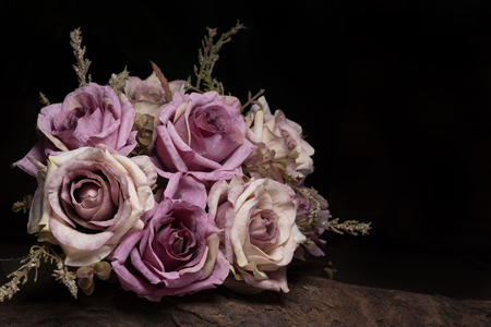 Still life photography with purple rose on timber over back background Standard-Bild
