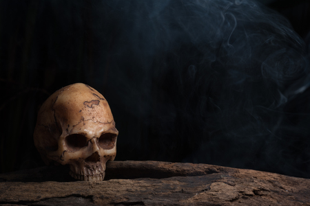 Still life photography with human skull on timber over darkness background with smoke, Horror concept