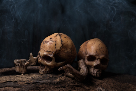 Still life painting photography with two human skulls with smoke, Creepy and darkness style