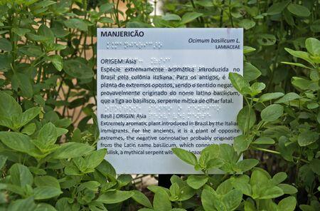 Nameplate and plant information (including Braille) in public garden. Standard-Bild