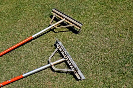 A pair of rakes on the grass