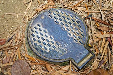 Manhole cover on public park