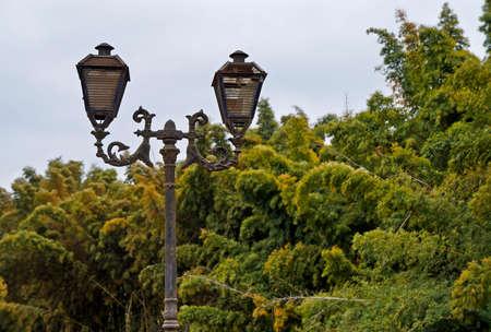 Ancient light pole and vegetation, Tiradentes, Brazil