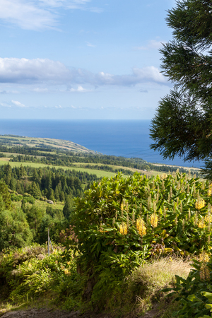 Looking over Landscape of Sao Miguel with Ocean in Background, Azores. Stock Photo