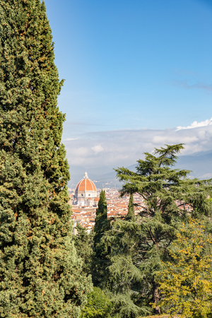 Aerial View of Cathedral of Saint Mary of Flower between Trees, Italy, Europe