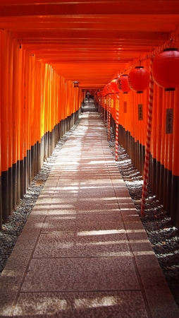 Fushimi Inari Taisha Toriis, Kyoto, Japan Editöryel