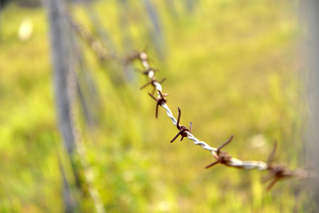 Rusty old barb wire surrounding farming property photo
