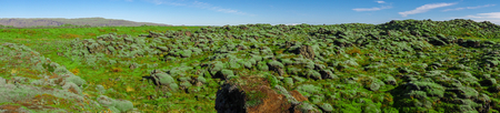 The Beautiful panorama view of blue sky and eldhraun lava field. The Green moss covered lava rock.