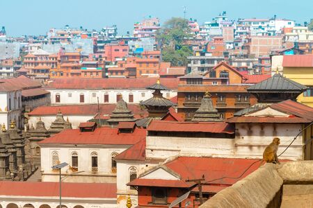 The Pashupatinath Temple is a famous   Located  on the banks of the Bagmati River in Kathmandu, Nepal. Stok Fotoğraf