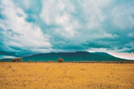 Savana Bekol [Baluran National Park], East Java, Indonesia Stock Photo