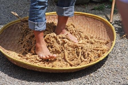 Taiwan tribe making millet wine
