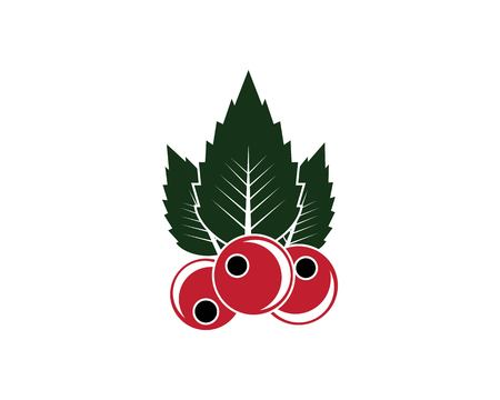 berry fruits icon vector template illustration