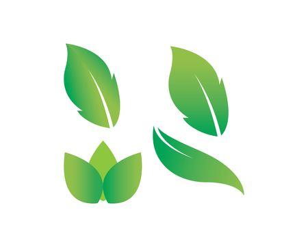 Tree leaf vector logo design, eco-friendly concept Ilustracja