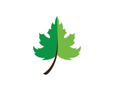 autumn leaves logo vector template ilustration  イラスト・ベクター素材