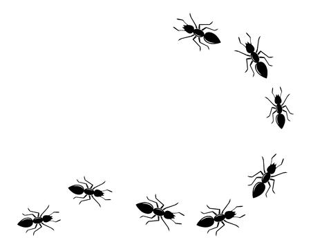 modello di progettazione dell'illustrazione di vettore dell'icona del logo della formica