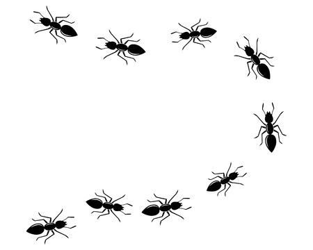 modello di progettazione dell'illustrazione di vettore dell'icona del logo della formica Logo