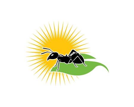 Ant Logo template vector illustration design Ilustração