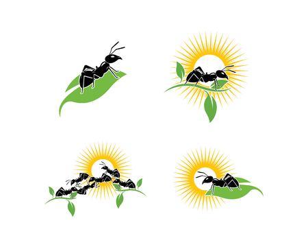 Ant Logo template vector illustration design Vettoriali