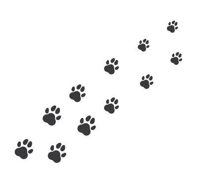 icona del logo della zampa del modello vettoriale dell'animale domestico