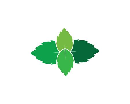 papermint leaf illustration vector template 向量圖像