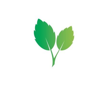 papermint leaf illustration vector template Ilustração