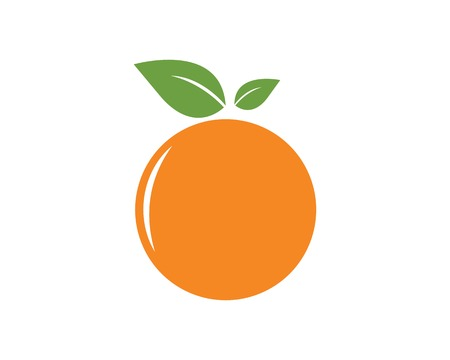 orange fruit icon vector logo illustration template