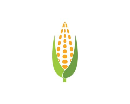 corn vector icon illustration design template