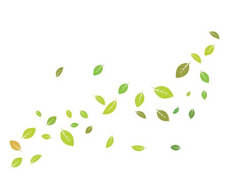 mint leaf illustration vector template design 向量圖像