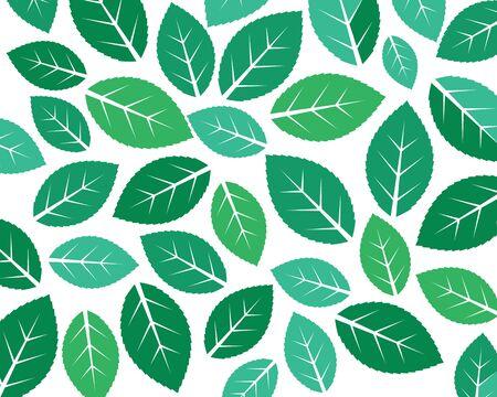 mint leaf illustration vector template design 版權商用圖片 - 134527844
